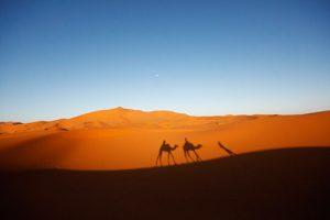 1 Noche Paseo en Camello Merzouga